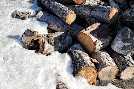 Stacked logs on the snow under the sunlight Stock Photo - 58926665