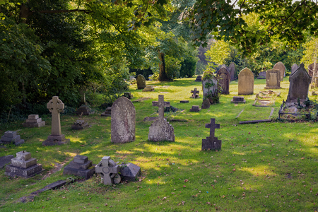 Oude begraafplaats in het bos