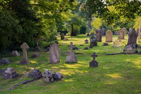 Stary cmentarz w lesie