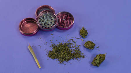 Marijuana buds, weed, grinder and joint lay on blue background. Cannabis, hemp