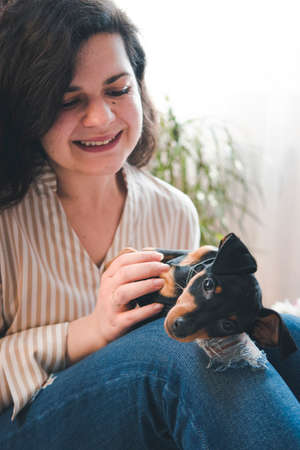 The young happy woman played with a cute little puppy. Black and tan miniature pinscher in the females hand