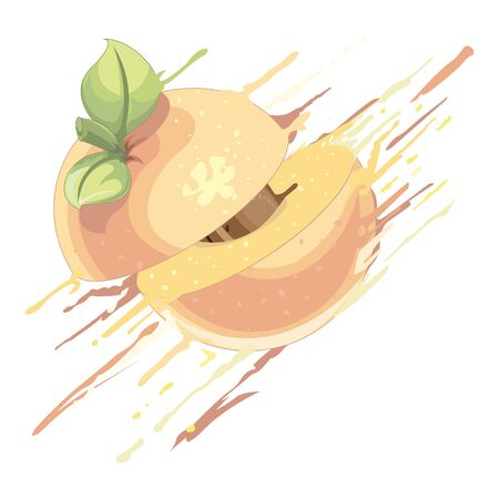 Peach splash - illustration Imagens - 129017151