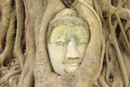 Ancient Lord Buddha Statue Stock Photo - 21805712