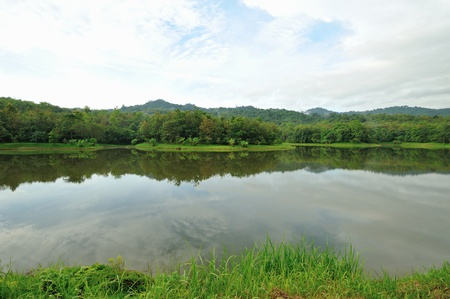 caucas: View natural  forest   and mountain in thailand