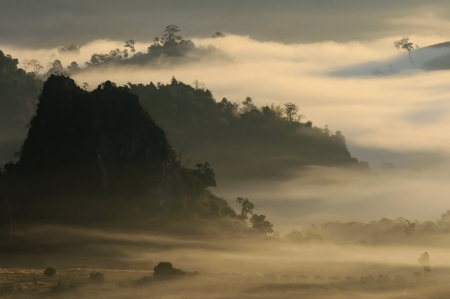 Sunrise light morning mistmountain  Phu Lanka national park in Phayao provincial Thailand photo