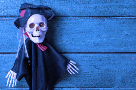 Skeleton witch on wooden background, toned in blue. Halloween concept. Stock Photo