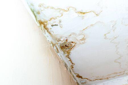 Regenwater lekt op het plafond vanwege een beschadigd dak waardoor het verval, afbladderende verf en beschimmeld wordt.