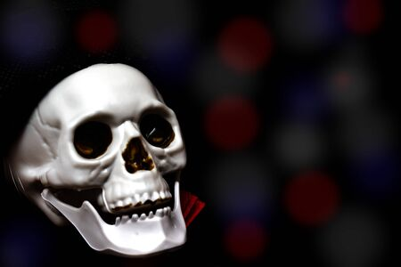 Creepy smiling skeleton skull close up on black bokeh background with copy space, death and mystery concept, halloween. Stok Fotoğraf