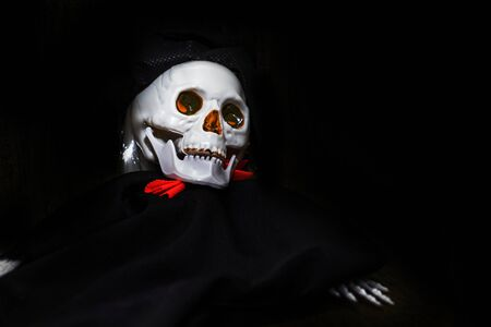 Creepy smiling skeleton skull close up on black background with copy space, death and mystery concept, halloween. 写真素材