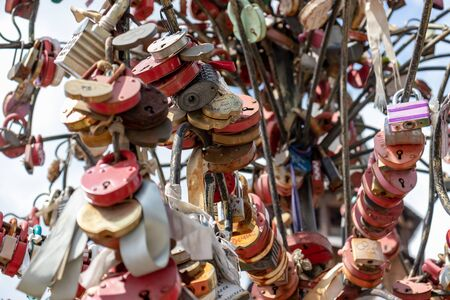 Moscow, Russia - August 03, 2019: Many wedding multicilored locks, castles on a wedding tree as a symbol of eternal love and happiness. Reklamní fotografie - 137708905