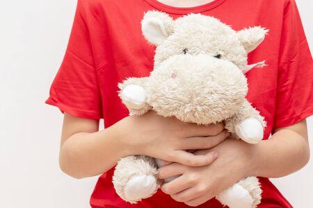 A boy in red t-shirt holding, hugging a soft toy teddy Reklamní fotografie