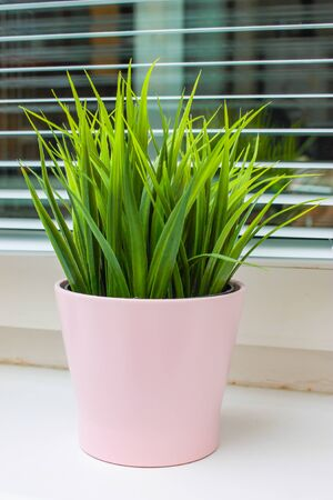 Green artificial potted plant in pink ceramic pot on a window sill in a modern home.
