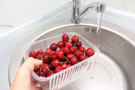 Female hand washing ripe sweet cherry in a kitchen sink under water jet, cleaning fresh fruits of bacteria and dirt.