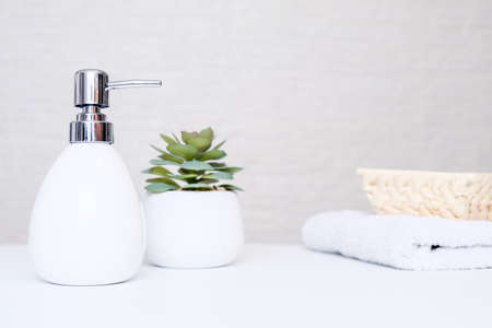 Spa salon and bathroom interior in pastel colors, gray soap dispenser, white towel and potted plant for spa, body and face care Reklamní fotografie