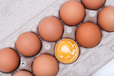 A brown chicken egg with yellow yolk is half broken among other eggs in a carton tray Фото со стока