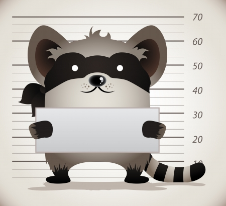 shots: Cartoon Raccoon Mug Shot Illustration