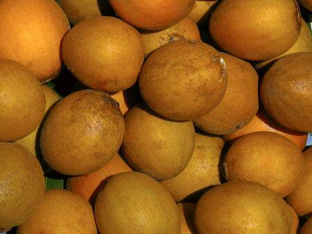 Close-up of abundance of fresh Sapodilla fruit Stock Photo