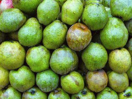 Pyrus communes sweet juicy green fruit mainly cultivated in Europe and North America