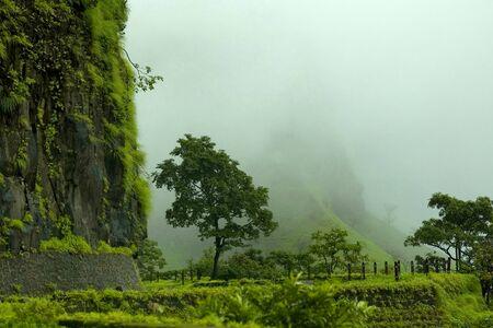 Shrivardhan fort in the rains, Rajmachi village, Maharashtra