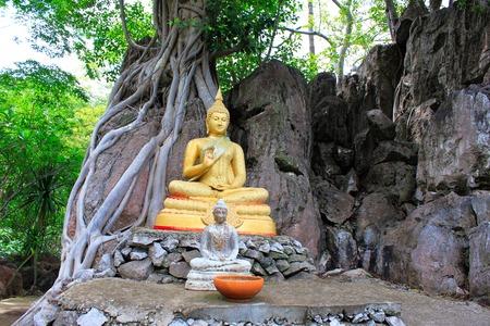 Golden sitting Buddha under a tree with old roots and rocks around at Ban Bung Sam Phan Nok, Phetchabun, Thailand Фото со стока
