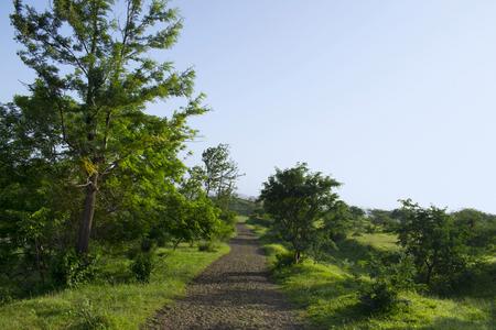 Walking track near Swaminarayan hills in Pune, Maharashtra, India