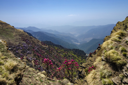 Colourful Valley seen from Tungnath Peak, Garhwal, Uttarakhand, India.
