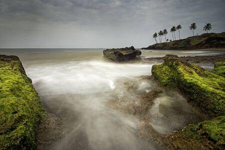 Redi beach, a panoramic view lined with coconut trees, Sindhudurga, Maharashtra, India