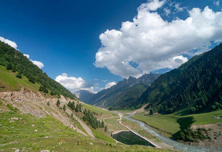 Green Valley at Sonmarg, Jammu and Kashmir, India 免版税图像