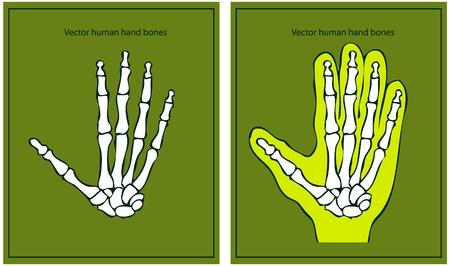human hand Stock Vector - 9631820