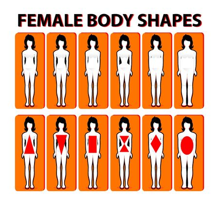 Female body shape or figure types. Woman collection. Body proportions