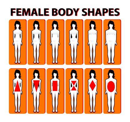 Vrouwelijke vorm van het lichaam of figuur types. Woman collectie. Lichaamsverhoudingen