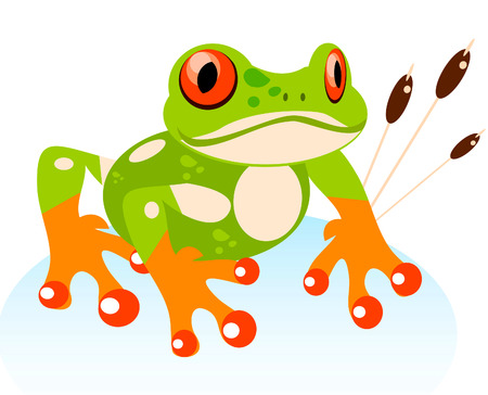 redeyed tree frog: Vector Cute Cartoon Friendly Frog, Colorful Red-eyed Tree Frog illustration Stock Photo