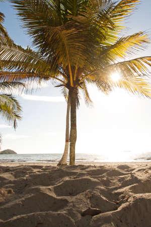 Caribbean landscapes in summer season, gorgeous beaches and wonderful times Foto de archivo