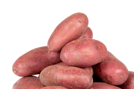 russet: red potatoes on white background Stock Photo