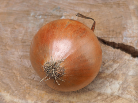 one onion on a piece of wood