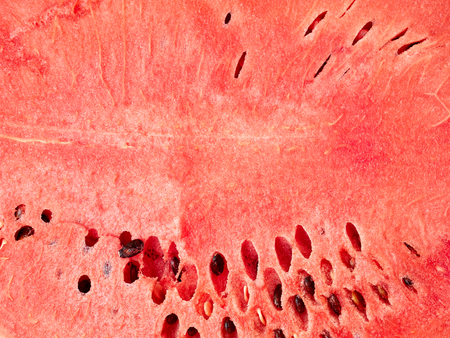 Close-up background of watermelon