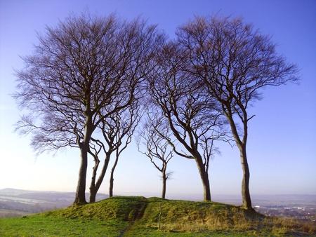 Tertre des guerriers copte Hill (Seven Sisters), Houghton le Spring Banque d'images - 11957012