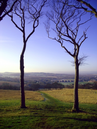 le: View From Copt Hill, Houghton le Spring