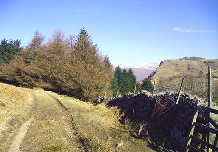 Birker Fell, Lake District, Cumbria Stock Photo - 24053463