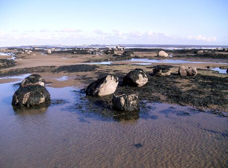 Rocks on Robin Hoods Bay Beach, North Yorkshire Stock Photo
