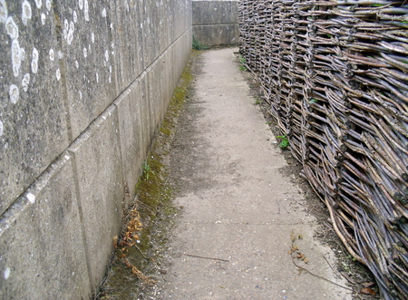 Narrow High-Walled Alley with Wicker Wall on One Side