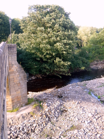 The River Wear at Frosterley in County Durham