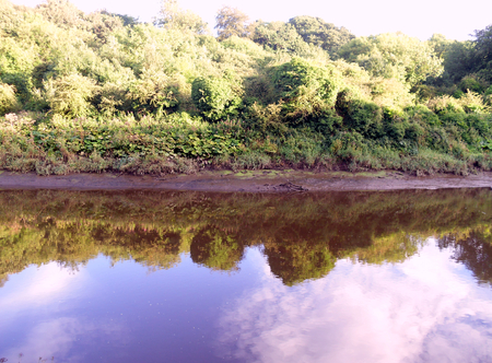 The Muddy Banks of the River Wear at Washington near Sunderland