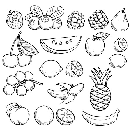 Black and white fruits and berries in hand drawn sketch style. Vector