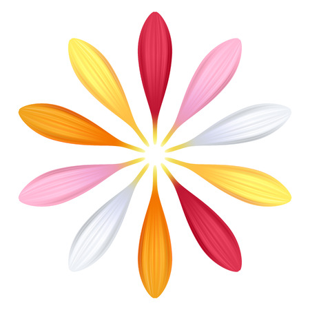 orange gerbera: Set of colorful gerbera petals. Flower parts. Pink, red, white, yellow and orange colors.