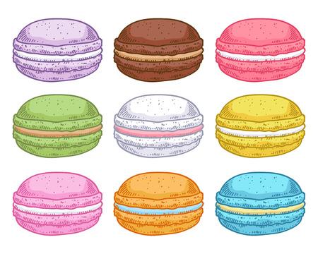 pasteleria francesa: Conjunto de macarons dibujados a mano surtidos. Macarrones coloridos aislados sobre fondo blanco. Vectores