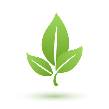 Green leaf eco bio icon. Environment symbol. Nature emblem.