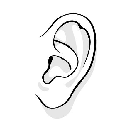 human vector: Human ear vector illustration. Woman or man face part icon.