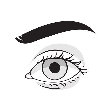 stare: Human eye vector illustration. Woman or man face part icon.