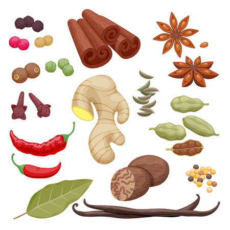 flavour: Spices and herbs icons set vector illustration. Anise cinnamon cloves ginger pepper cinnamon cardamom vanilla laurel cumin symbols.
